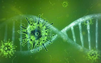 Extra steunmaatregelen bedrijven inzake coronavirus